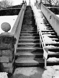 Stairs. In a winter park Stock Image