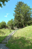 Stairs with wooden barrier on hillside. Stock Photo