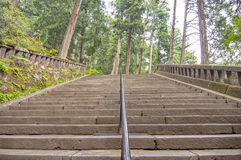 Stairs in the woods Royalty Free Stock Photos