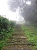 Stairway à floresta Imagens de Stock Royalty Free
