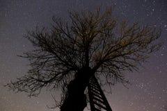stairway раев к Стоковые Фото