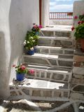 Stairway. A stone stairway with geraniums in the greek islands Royalty Free Stock Photo