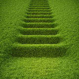 Stairway. Covered with green grass Royalty Free Stock Photo