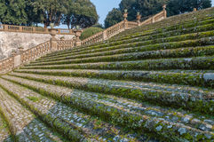 Stairway. An anciet stairway in frascati rome Stock Photography
