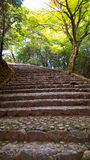 Stairway in Arashiyama Bamboo Grove forest, Kyoto Stock Images