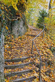 Stairway in authumn colors and falled leaves. A colorful, romantic and  place Stock Image