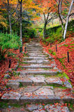 Stairway in autumn, Jojakkoji temple, Arashiyama, Kyoto, Japan. Stairway in autumn, Jojakkoji temple, Arashiyama area, Kyoto, Japan Royalty Free Stock Images