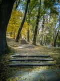 Stairway in the autumn park stock photo
