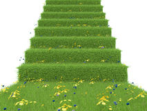 Stairway covered with green grass. isolated on white background Stock Photography