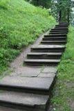 Stairway a em nenhuma parte Fotos de Stock Royalty Free