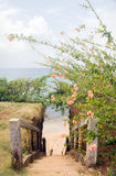 Stairway entry to sandy beach  flowers Caribbean Sea Little Corn Stock Photos