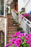 Stairway with flowers in the Mijas town, Spain. Stock Photo