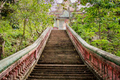Stairway going up to the buddhist temple in jungle forest Royalty Free Stock Photo
