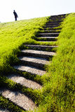 Stairway in the grass Stock Images