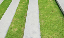 Stairway with green grass and gravel texture Stock Photo