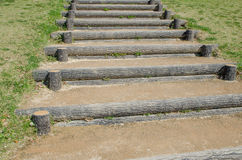 Stairway with green plant Royalty Free Stock Photo
