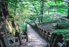Stairway in the mountains of Wudang stock photography