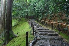 Stairway na floresta foto de stock