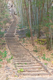 Stairway through a national park Stock Photos