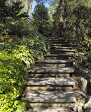 Stairway in Ornamental Garden Stock Image