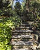 Stairway in Ornamental Garden Stock Image