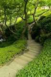 Stairway in park Royalty Free Stock Photography