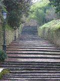Stairway steps Royalty Free Stock Photo