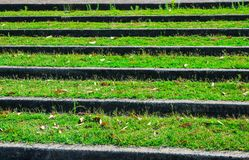 Stairway steps pattern with greengrass in close up at a garden. stock photography