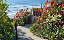 Stairway to beach at Thalia Street in Laguna Beach, California. Royalty Free Stock Photography