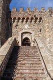 Stairway to Castle Door Stock Images
