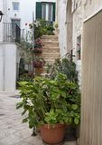 Stairway to entrance home in Locorotondo, southern Italy. Pictured is a stairway to the entrance of a home in Locorotondo.  It is decorated with lovely small Royalty Free Stock Image