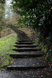 Stairway to heaven. A stairway to heaven - maybe Royalty Free Stock Photo