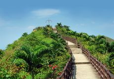 Stairway to Heaven. Tropical garden with stairs leading to the sky Stock Photo