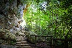 Free Stairway To Heaven Stock Photos - 44887703