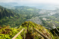 Stairway to Heaven in Oahu island Hawaii Royalty Free Stock Image