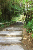 Stairway to the highest. This way to the highest spot of Thailand, Doi Inthanon royalty free stock image
