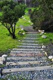 Stairway to Nature. The railroad tie stairway that leads from the Borges Ranch to one of the adjoining field is lined with boulders and native shrubbery. The Stock Photos