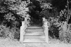 Stairway to nowhere. Stairway leading to nowhere on the edge of the forest in Branson, MO royalty free stock images