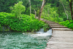 Stairway to paradise. Image of a wooden path in National park Plitvice lakes, Croatia Royalty Free Stock Photos