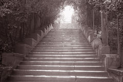 Stairway to Piazza Michelangelo, Florence Stock Photography