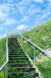 Stairway to sky. Among grass Royalty Free Stock Image