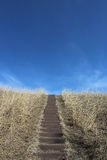 Stairway to the Sky. A stairway through tall grass leads to a blue sky Royalty Free Stock Images