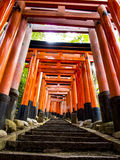 Stairway through Tori gates at Fushimi Inari shrine. Stairway leaing up through Tori gates at the Fushimi Inari shrine in Kyoto, Japan Stock Image