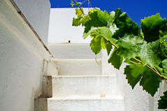 Stairway white in exterior Stock Photos