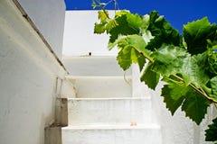 Stairway white in exterior. Stairway white at spanish home Stock Photos