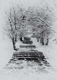 Stairway in winter Stock Photo