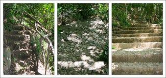 Free Stairways Royalty Free Stock Photos - 25954368