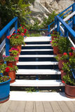 Stairways with flowers. White stairs surrounded by red flowers Stock Images