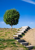 Stairways to the sky-1. Stone stairs on a hill Stock Photography