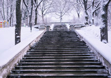 Stairways to winter Royalty Free Stock Image